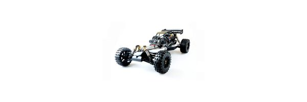 RC Car - Buggy